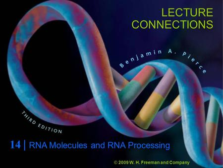 LECTURE CONNECTIONS 14 | RNA Molecules and RNA Processing © 2009 W. H. Freeman and Company.