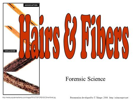 Forensic Science  Presentation developed by T. Trimpe 2006