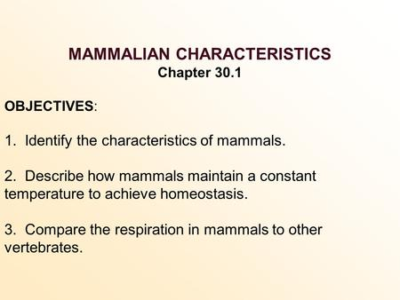 MAMMALIAN CHARACTERISTICS Chapter 30.1 OBJECTIVES: 1. Identify the characteristics of mammals. 2. Describe how mammals maintain a constant temperature.