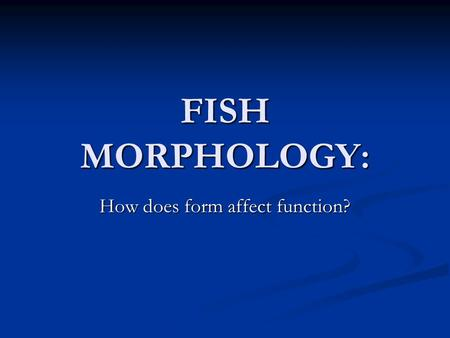 FISH MORPHOLOGY: How does form affect function?. COLORATION Chromatophores Chromatophores Allows a fish to blend in with its environment Allows a fish.