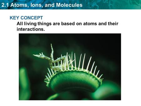 2.1 Atoms, Ions, and Molecules KEY CONCEPT All living things are based on atoms and their interactions.