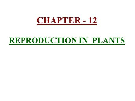CHAPTER - 12 REPRODUCTION IN PLANTS. 1) Reproduction :- Reproduction :- is the production of new individuals from their parents. The vegetative parts.