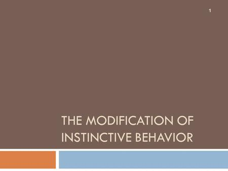 THE MODIFICATION OF INSTINCTIVE BEHAVIOR 1. Elicited or Unconditioned Behavior  Occurs without past experience  Modifiable with experience (examples: