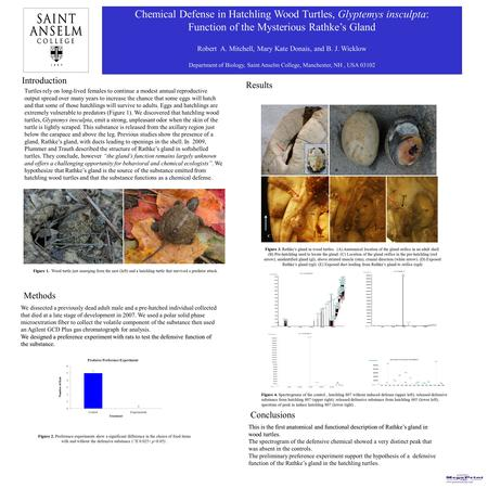 Printed by www.postersession.com Chemical Defense in Hatchling Wood Turtles, Glyptemys insculpta: Function of the Mysterious Rathke's Gland Robert A. Mitchell,