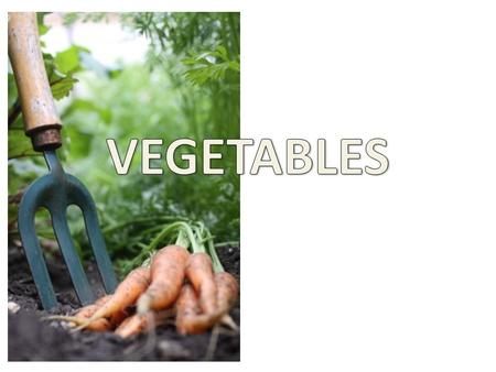 Vegetables are from Plants -They are the edible parts of a plant.