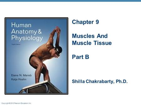 Copyright © 2010 Pearson Education, Inc. Chapter 9 Muscles And Muscle Tissue Part B Shilla Chakrabarty, Ph.D.