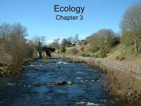 Ecology Chapter 3. What is Ecology Interactions between living and nonliving things or the biotic and abiotic. Biotic – all living organisms (plants &
