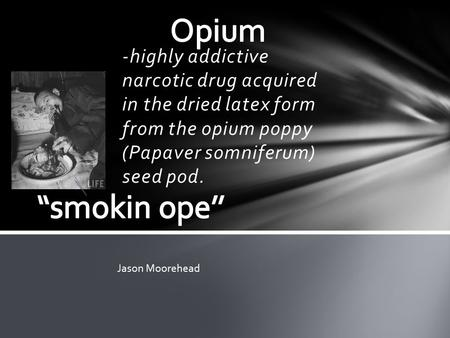 -highly addictive narcotic drug acquired in the dried latex form from the opium poppy (Papaver somniferum) seed pod. Jason Moorehead.