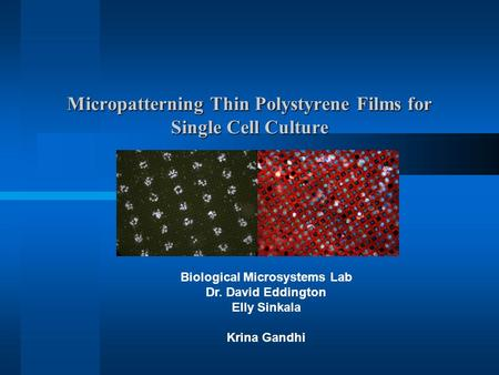 Micropatterning Thin Polystyrene Films for Single Cell Culture Biological Microsystems Lab Dr. David Eddington Elly Sinkala Krina Gandhi.