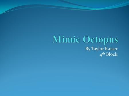 By Taylor Kaiser 4 th Block. What is a mimic octopus? Scientific name: Thaumoctopus mimicus A mimic octopus is a variety of octopus closely related to.