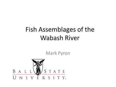 Fish Assemblages of the Wabash River Mark Pyron. Wabash River Fishes 1.Large river 2.High diversity 3.History of human impact 4.Fish assemblages respond.