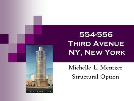 554-556 Third Avenue NY, New York Michelle L. Mentzer Structural Option.