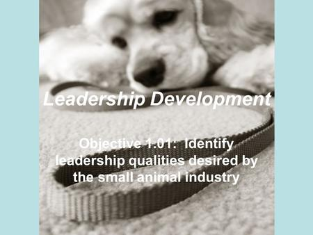 Leadership Development Objective 1.01: Identify leadership qualities desired by the small animal industry.