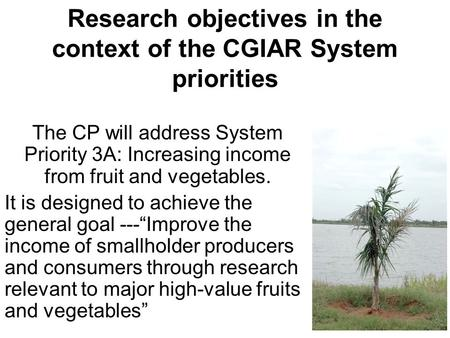 Research objectives in the context of the CGIAR System priorities The CP will address System Priority 3A: Increasing income from fruit and vegetables.