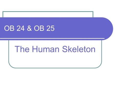 OB 24 & OB 25 The Human Skeleton. Learning Objectives OB24 identify the main parts of the human skeleton and understand that the functions are support,