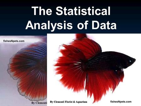 The Statistical Analysis of Data. Outline I. Types of Data A. Qualitative B. Quantitative C. Independent vs Dependent variables II. Descriptive Statistics.