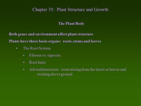 Chapter 35: Plant Structure and Growth The Plant Body Both genes and environment affect plant structure Plants have three basic organs: roots, stems and.