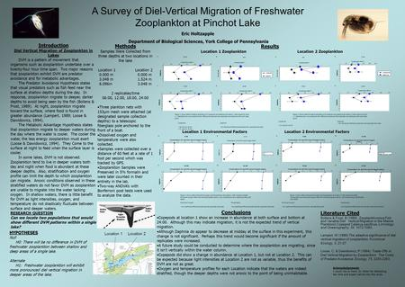 A Survey of Diel-Vertical Migration of Freshwater Zooplankton at Pinchot Lake Eric Holtzapple Department of Biological Sciences, York College of Pennsylvania.