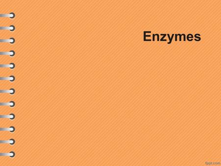 Enzymes.  Proteins play major roles in the cell, but none as important as making up enzymes.  Enzymes permit reactions to occur at rates of thousands.