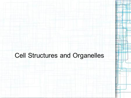 Cell Structures and Organelles. Cell Theory 1) All living things are composed of cells. 2) Cells are the basic units of structure and function in living.
