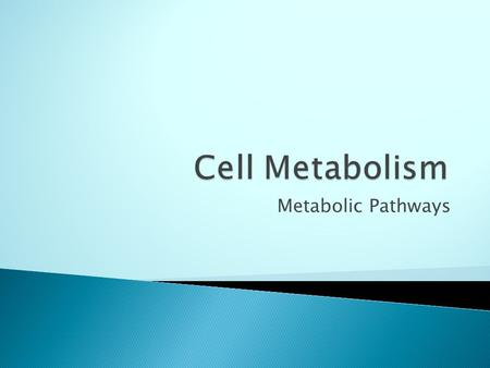 Metabolic Pathways. What you should learn:-  The difference between Anabolic and Catabolic metabolic pathways, and give examples of each.  The importance.