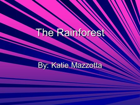 The Rainforest By: Katie Mazzotta. Why rainforests are disappearing and the percentage of the rainforests already gone are… They are gone because logging.