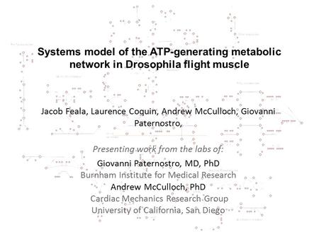 Systems model of the ATP-generating metabolic network in Drosophila flight muscle Jacob Feala, Laurence Coquin, Andrew McCulloch, Giovanni Paternostro,
