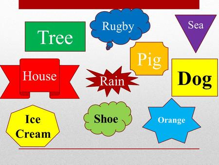 Tree Dog House Orange Rugby Sea Pig Rain Ice Cream Shoe.