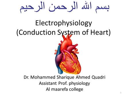 Electrophysiology (Conduction System of Heart) Dr. Mohammed Sharique Ahmed Quadri Assistant Prof. physiology Al maarefa college 1.