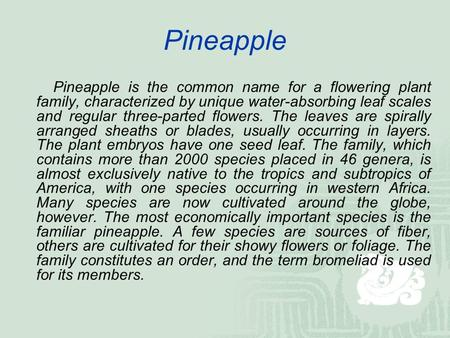Pineapple Pineapple is the common name for a flowering plant family, characterized by unique water-absorbing leaf scales and regular three-parted flowers.