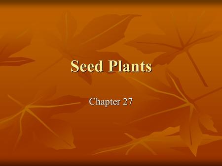 Seed Plants Chapter 27. Seeds are 'better' than spores Seed contains a multicellular young plant Seed contains a multicellular young plant Root, stem,