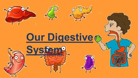 Our Digestive System. In order to ensure smooth functioning of the body, the organs of the body form various organ systems which perform specific tasks.