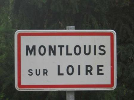 The Montlouis inhabitants are called Montlouisiens for men and Montlouisiennes for women. There are 11,000 inhabitants in Montlouis.