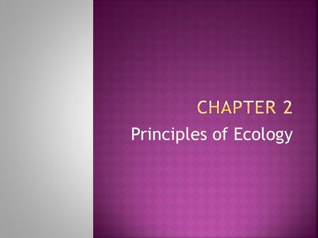 Principles of Ecology.  Study of the interactions among organisms and their environments.