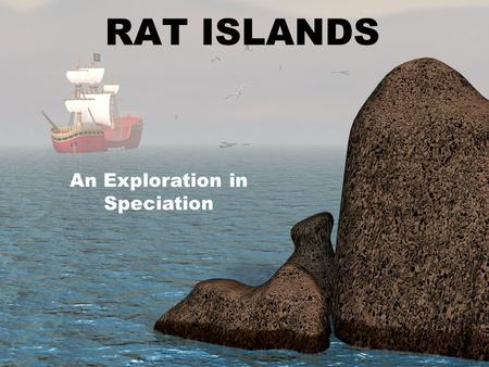 RAT ISLANDS An Exploration in Speciation. RAT ISLANDS The year was 800 A.D. Early Egyptian explores were beginning to set sail in search of new lands.