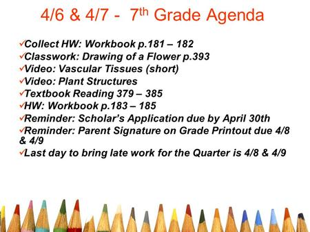 4/6 & 4/7 - 7 th Grade Agenda Collect HW: Workbook p.181 – 182 Classwork: Drawing of a Flower p.393 Video: Vascular Tissues (short) Video: Plant Structures.