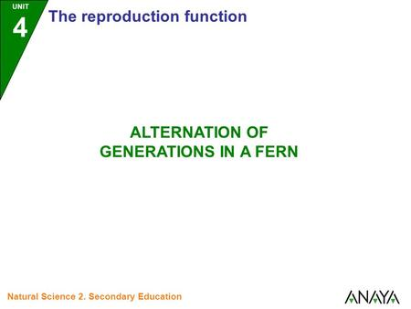 UNIT 4 The reproduction function ALTERNATION OF GENERATIONS IN A FERN Natural Science 2. Secondary Education.