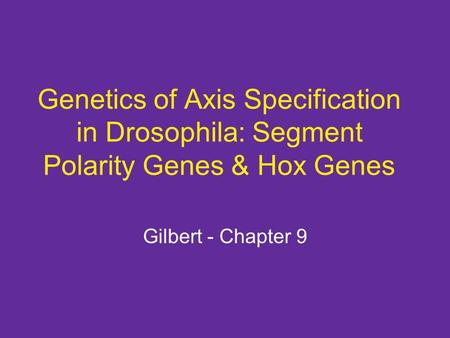 Genetics of Axis Specification in Drosophila: Segment Polarity Genes & Hox Genes Gilbert - Chapter 9.