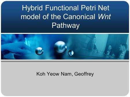 Hybrid Functional Petri Net model of the Canonical Wnt Pathway Koh Yeow Nam, Geoffrey.