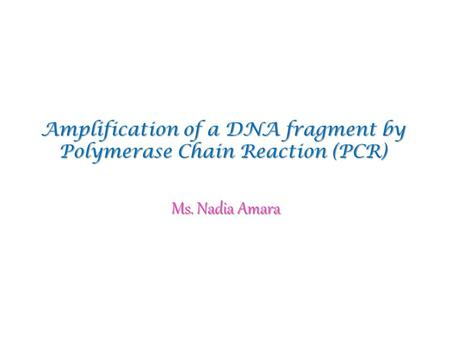 Amplification of a DNA fragment by Polymerase Chain Reaction (PCR) Ms. Nadia Amara.