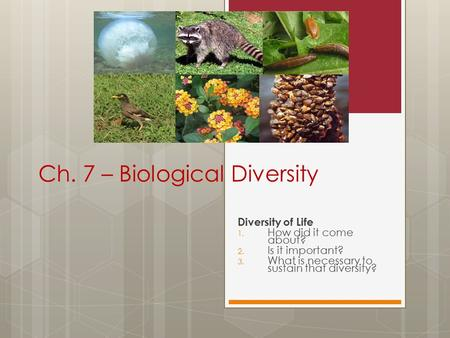 Ch. 7 – Biological Diversity Diversity of Life 1. How did it come about? 2. Is it important? 3. What is necessary to sustain that diversity?