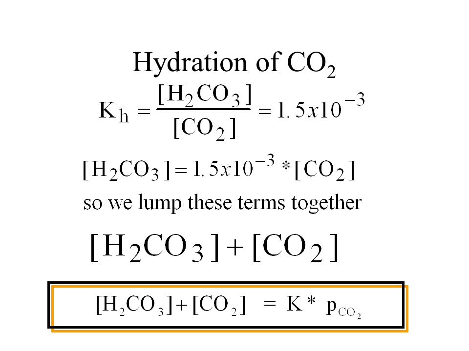Forms of CO 2 in Water Carbonic acid (H 2 CO 3 ), Bicarbonate (HCO 3 - ), and Carbonate (CO 3 2- ).
