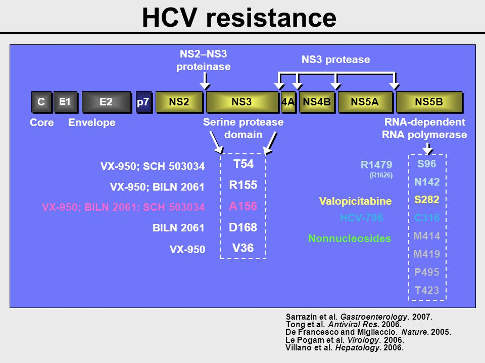 Combination of Enzyme Inhibitors in the Replicon System Protease InhibitorsPolymerase InhibitorsReplicon System SCH 503034HCV -796 Increase Anti-viral Decrease Resistance SCH 503034NM 107 Increase Anti-viral Decrease Resistance VX-950R1479 Increase Anti-viral Decrease Resistance + + + EASL 2007- Howe AY - Kenilworth, USA, Abstract 432 EASL 2007- Ralston R - Kenilworth, USA, Abstract 793 EASL 2007- McCown M – Palo Alto, USA, Abstract 790