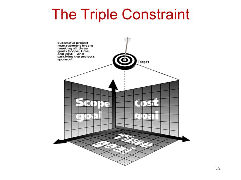 19 The Triple Constraint Fast, cheap, good. Choose two.
