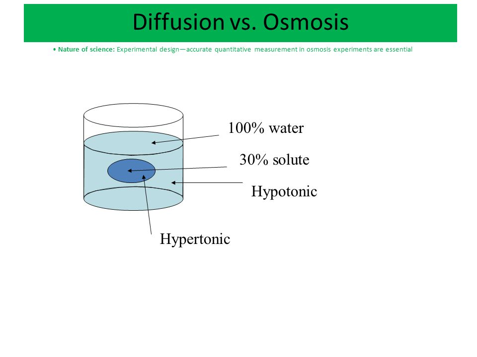 100% water 30% solute Direction Osmosis Will Occur Direction Diffusion of Solute Will Occur Diffusion vs.