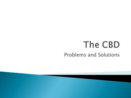 Problems and Solutions.  What does CBD stand for?  2 minutes – remind yourself what things you would find in the CBD  UK – City/Town Centre  France.