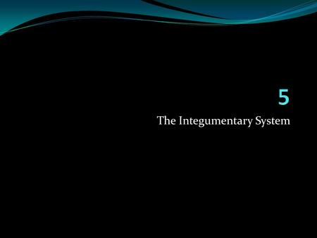 The Integumentary System. Skin (Integument) Consists of three major regions 1. Epidermis – outermost superficial region 2. Dermis – middle region 3. Hypodermis.