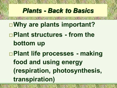 Plants - Back to Basics ¨ Why are plants important? ¨ Plant structures - from the bottom up ¨ Plant life processes - making food and using energy (respiration,