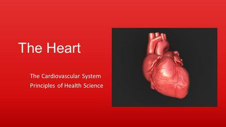 The Heart The Cardiovascular System Principles of Health Science.