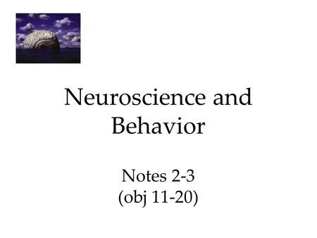 Neuroscience and Behavior Notes 2-3 (obj 11-20). 1.) The Brain Techniques to Study the Brain A brain lesion experimentally destroys brain tissue to study.